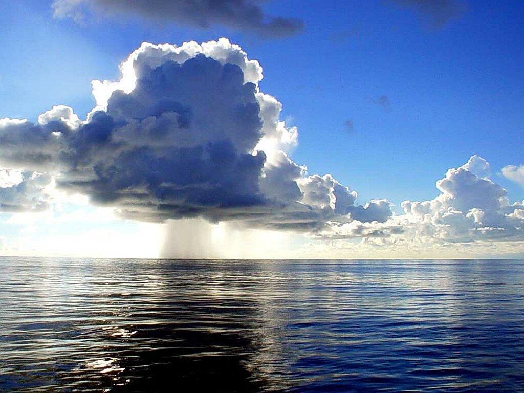 Облака над водой - обои рабочего столаДельфин 141,7 Kb Тип обоев для рабочих столов ПК  - JPG Качеcтво изображения 1024x768